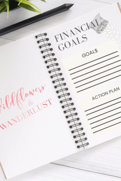 Set Financial Goals | WildflowersandWanderlust.com