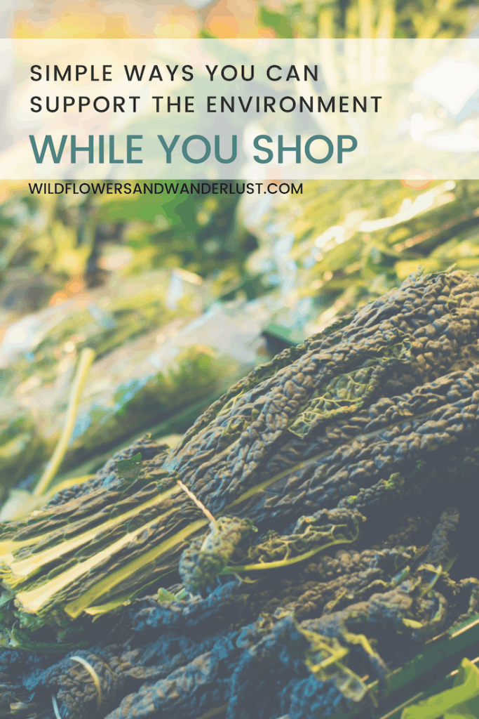 Go Green at the Grocery Store | Wildflowers and Wanderlust