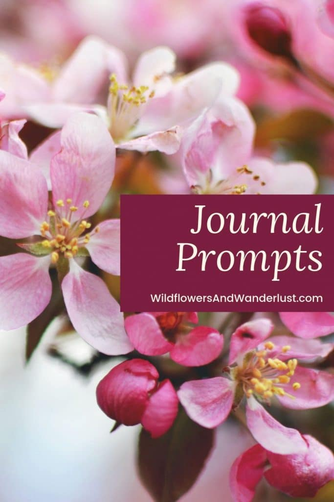 Journal Prompts for inspiring your writing and creativity  WildflowersAndWanderlust.com