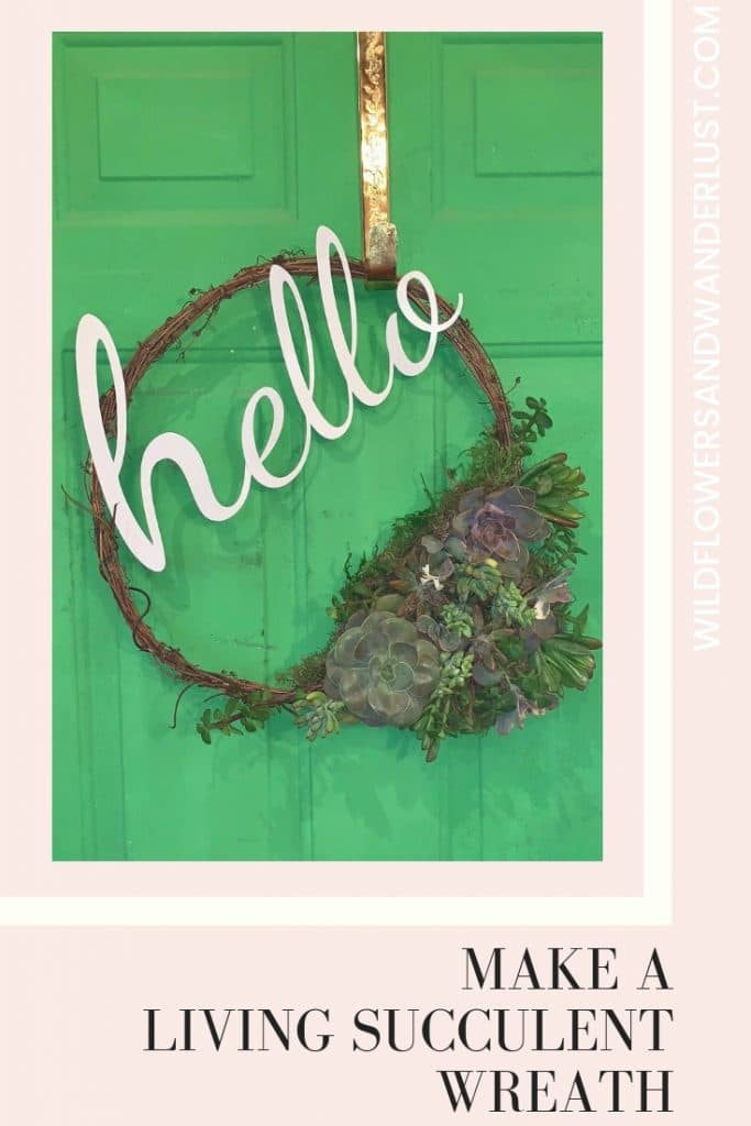 Make a Live Succulent Wreath in about 45 minutes following our easy tutorial   WildflowersAndWanderlust.com