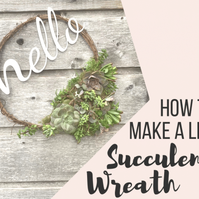 How to Make an Easy Succulent Living Wreath