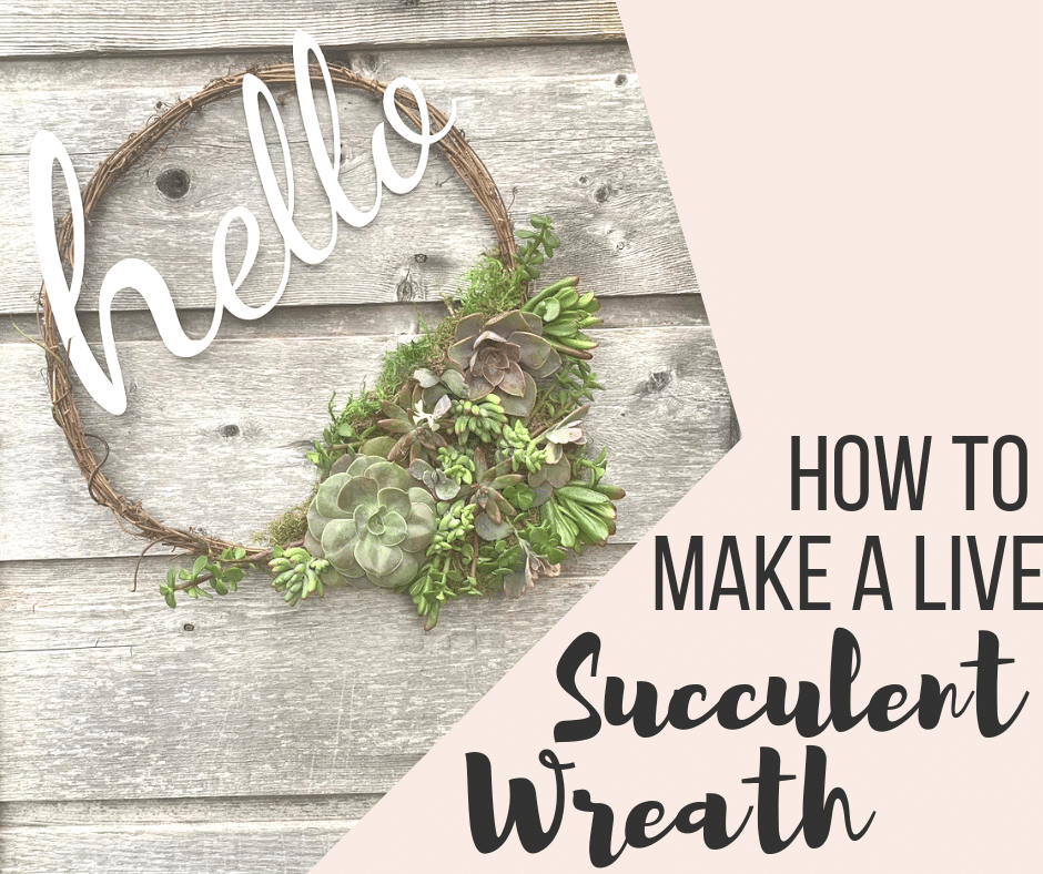 HOW TO MAKE A LIVE SUCCULENT WREATH | WildflowersandWanderlust.com