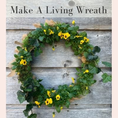 How to Make a Beautiful Live Floral Wreath Today