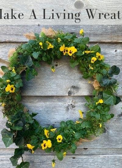 Easy to Make Living Wreath for your Front door | WildflowersAndWanderlust.com