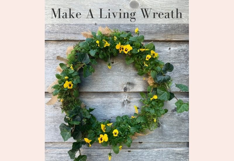 Easy to Make Living Wreath for your Front door | WildflowersAndWanderlust.com