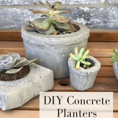 How to Make Easy DIY Concrete Pots for Succulents