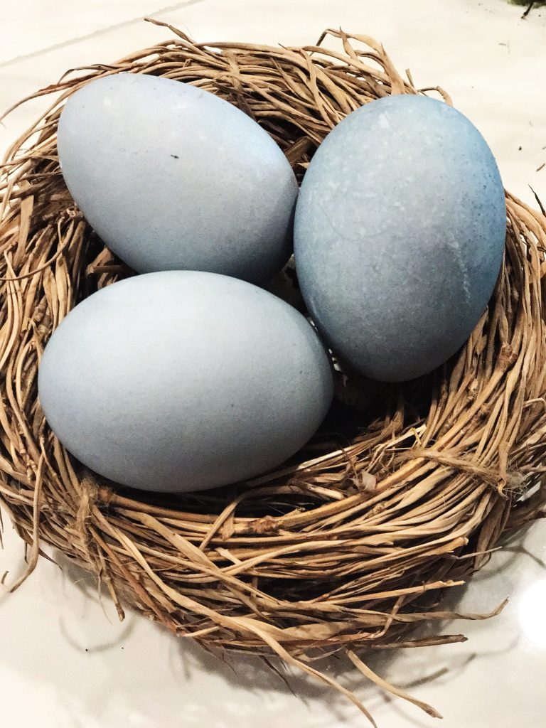 Blueberry Natural Dye Easter Eggs | WildflowersAndWanderlust.com