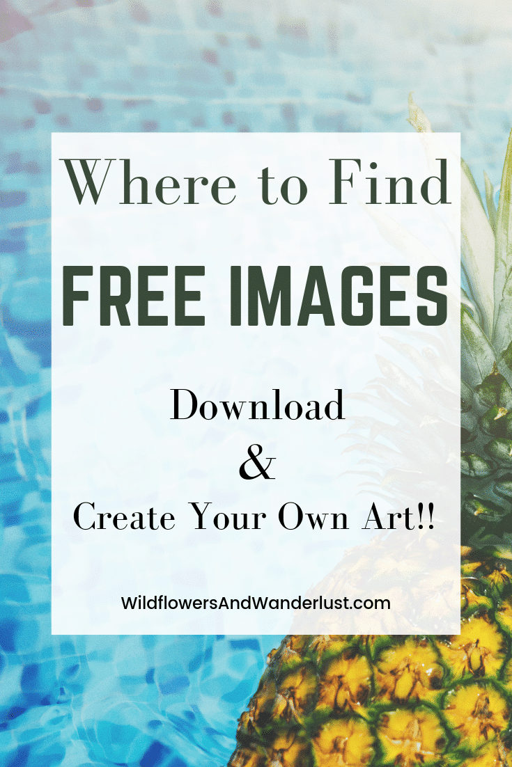 Great Places to find Free photos and images that you can download | WildlfowersAndWanderlust.com