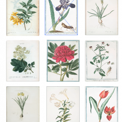 11 Free Vintage Spring Flowers For Amazing Art Prints