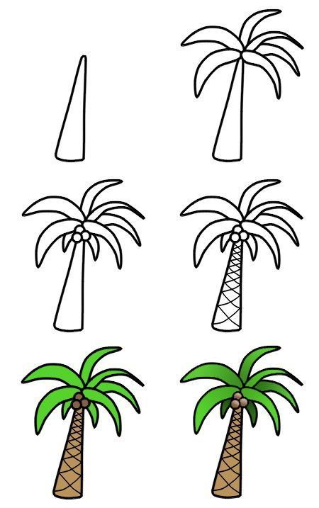 How to Draw a Palm Tree Doodle in 6 easy steps by How to Draw Funny Cartoons featured on WildflowersAndWanderlust.com
