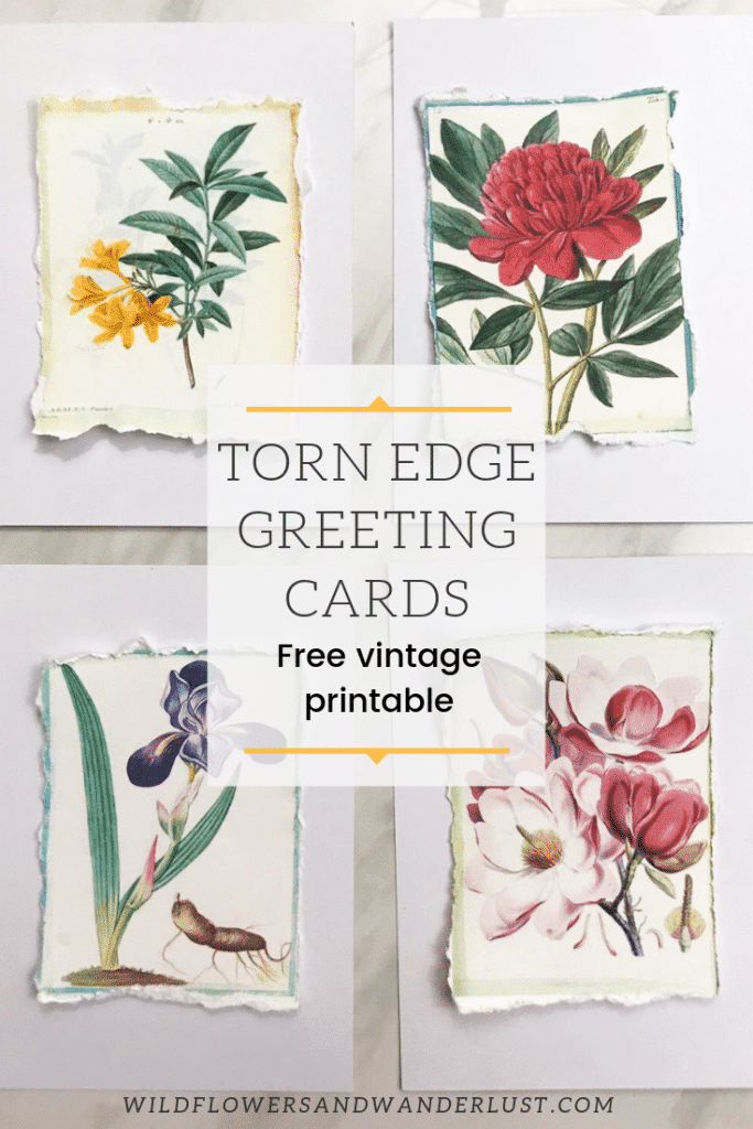 Make a torn edge greeting card with our free vintage printables | WildflowersAndWanderlust.com
